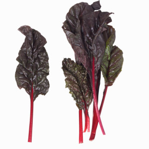 Swiss Chard - A Tasty Leafy Green Your Family will Enjoy!