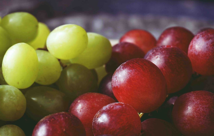 close up of green and purple grapes