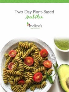 Two Day Plant-Based Meal Plan